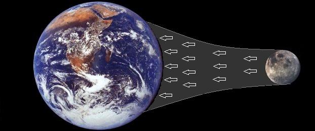 قوة الجذب بين الأرض والقمر