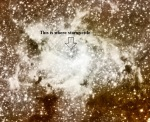 Where Stars Settle